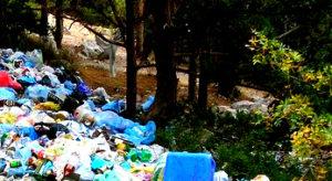 Вывоз мусора в Щербинке
